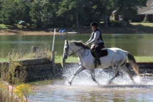 Trotting Through Water Feature